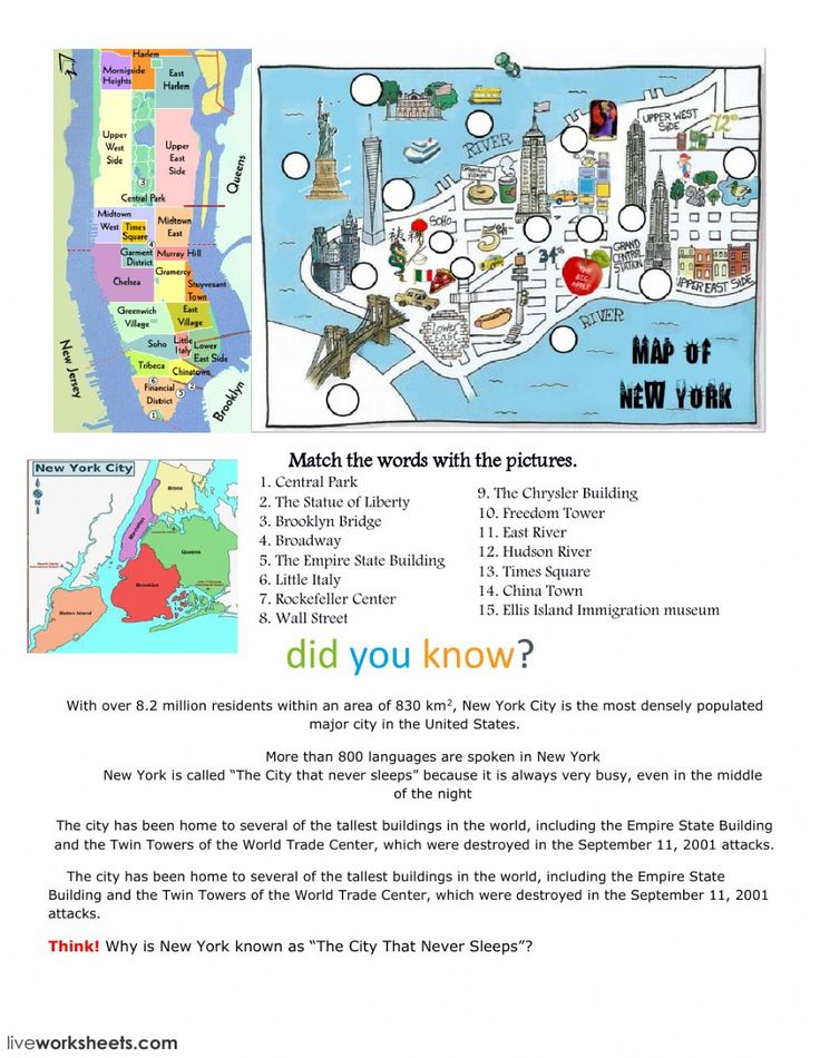 new york city interactive and downloadable worksheet you