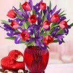 Envisagez-vous d' envoyer des fleurs magiques de Noël à vos proches et chers qui résidaient en France ? Noël est l'occasion sainte très attendu qui est largement apprécié par les masses mondiales en présentant des cadeaux surprise avec un bouquet de fleurs fraîches colorées .