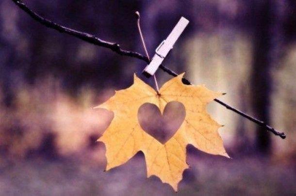 Ein Herbstherzl-)