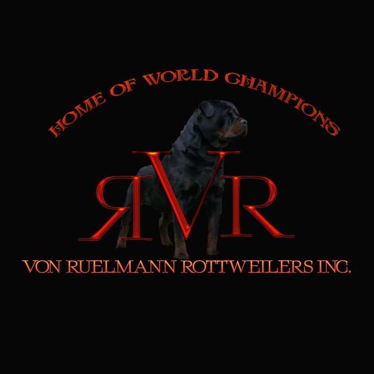 Von Ruelmann Rottweilers inc - German Rottweiler Puppies For Sale, Rottweiler Breeder, German Rottweiler Breeder
