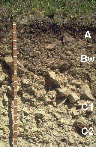 1000 images about soils around the world on pinterest for Minerals found in soil