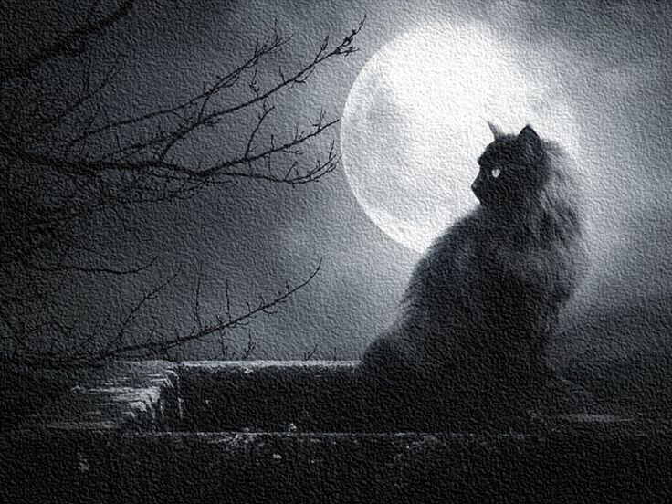 Beautiful illusion: Лунный календарь: Фазы Луны