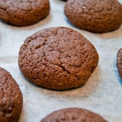 Cocoa Cookies - A recipe from 1921 for chocolate cookies made with cocoa powder. Cheap, simple, and made with ingredients in your pantry.