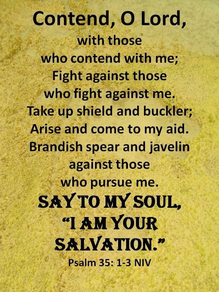 "Psalm 35:1-3 (NIV) - Contend, Lord, with those who contend with me; fight against those who fight against me.Take up shield and armor; arise and come to my aid. Brandish spear and javelin against those who pursue me.Say to me, ""I am your salvation."""