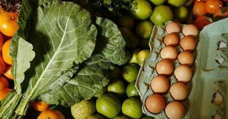 RS Notícias: Compra coletiva de orgânicos encurta caminho entre...