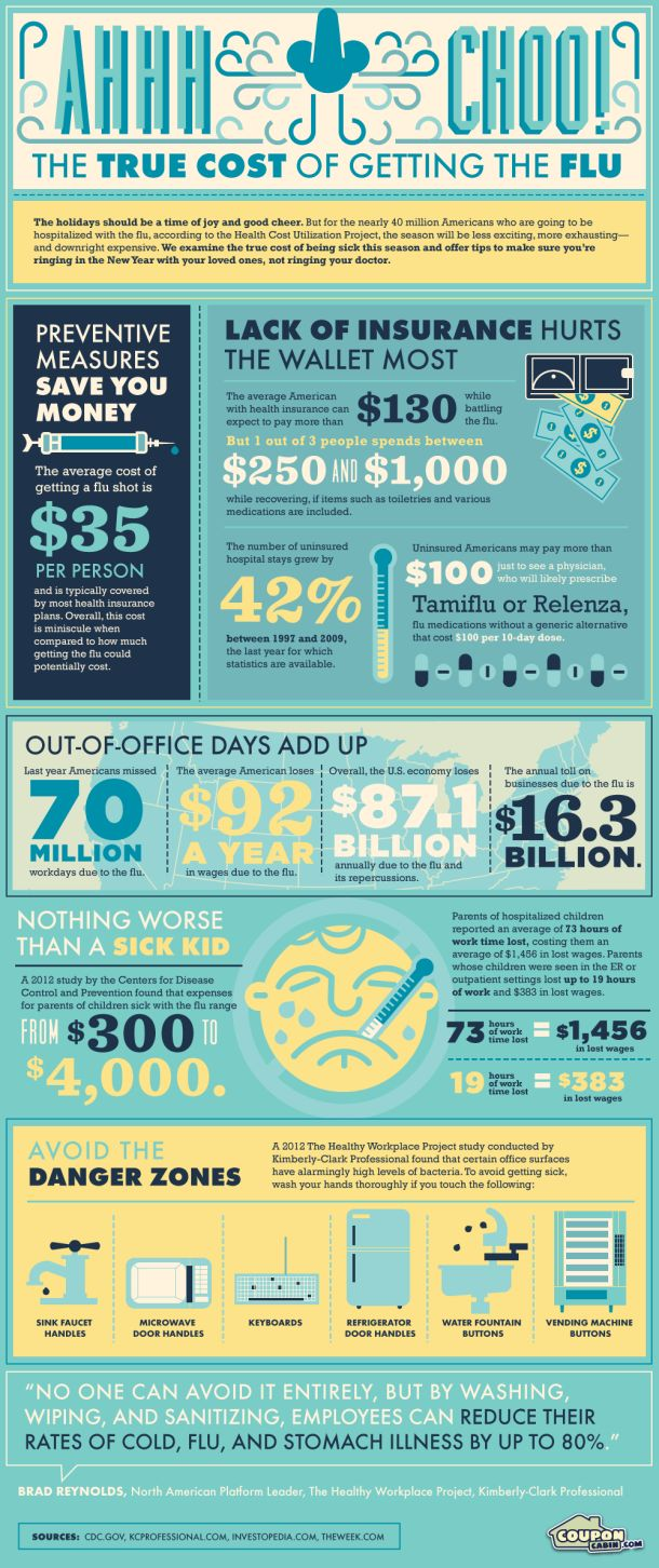The Costs of getting the Flu    Infographic from http://infographiclist.com/category/health/#
