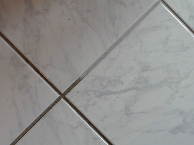 Clean Tiles and Remove Mould with *Tile Magic*