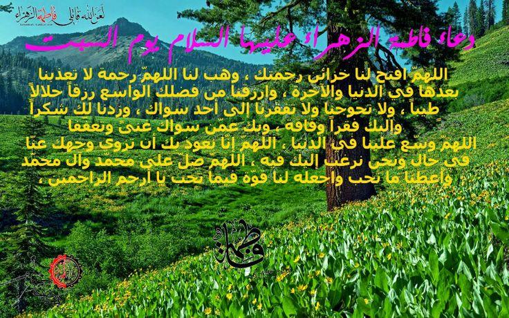 يا قائم آل محمد أدركنا اللهم صل على محمد و آل محمد و عجل فرجهم و ألعن أعدائهم أجمعين