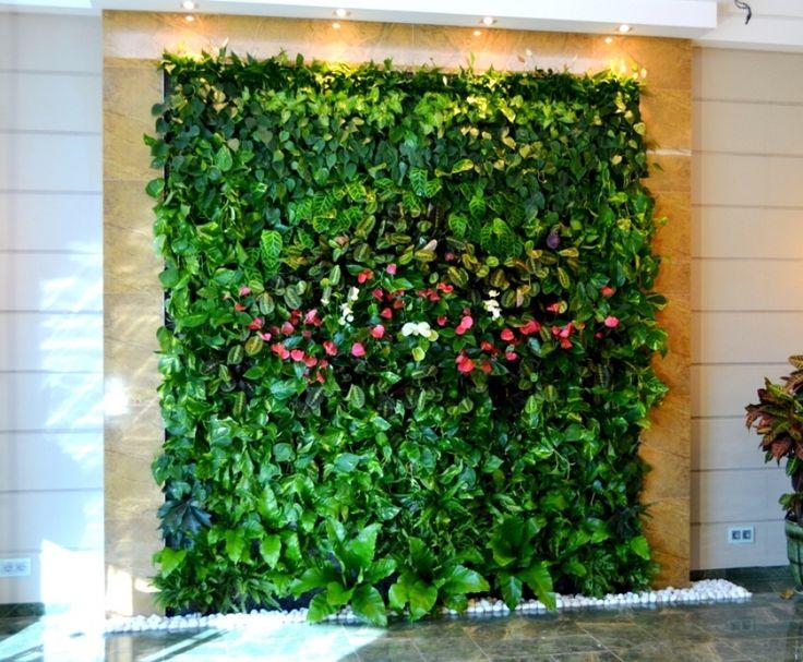 живые стены из растений