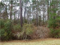 Interior Lot in Cape Royale, Texas. 203 Green Tree Dr, Coldspring TX  77331