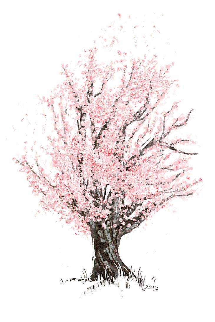 abstract tree drawings google search