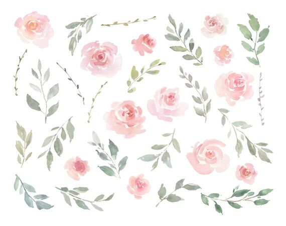Pink Watercolor Floral Clipart Free Commercial Use Blush Light Etsy Free Watercolor Flowers Floral Watercolor Pink Watercolor Flower