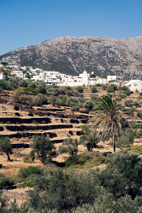 Sifnos – Places I loved Addresses and travel tips