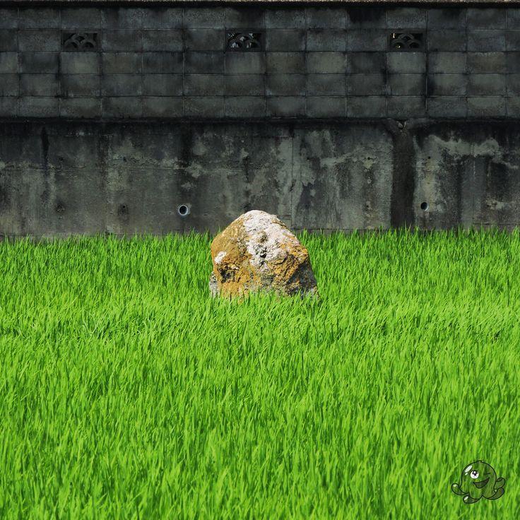 Gdzieś nadrodze, samotnykamień....  Somewhere on the way, alone rock... #japan #japon #japonia #nihon #travel #photography