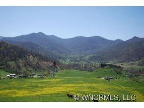 Williams Branch Rd, Barnardsville, NC 28709 - Home For Sale and Real Estate Listing - realtor.com®