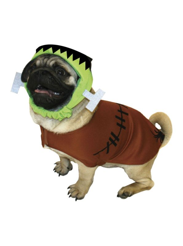Halloween Dog Costume Pictures