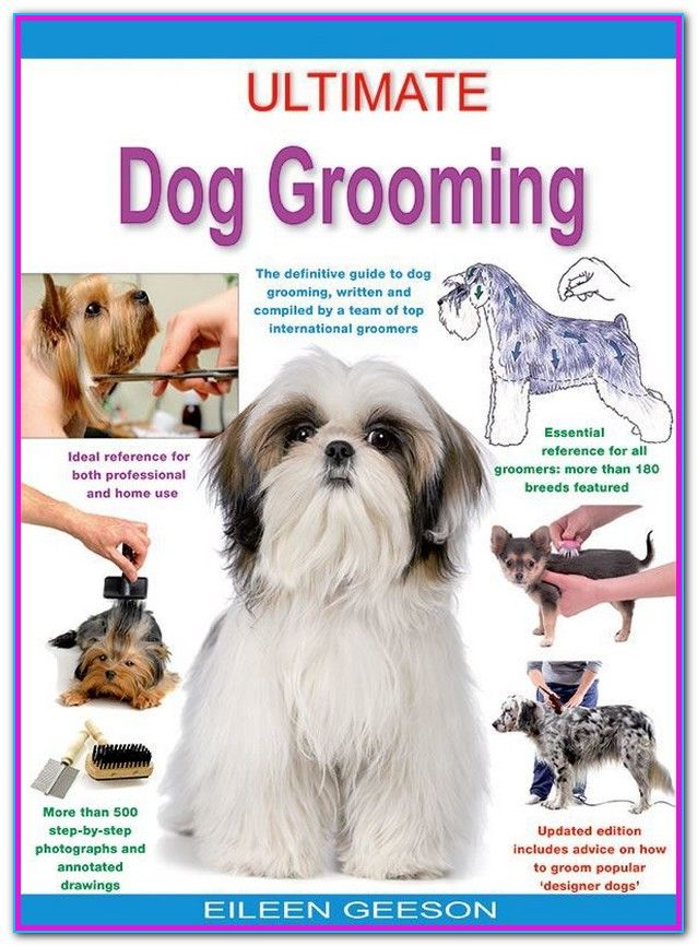 Dog Grooming Price List Pets At Home What Each Type Of Pet Groom Consists Of Prices Are Examples Only Your Pet Dog Grooming Dog Grooming Business Grooming