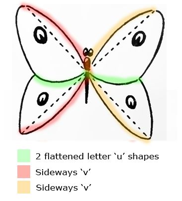 how to draw a butterfly easily step by step