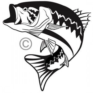 One Color Custom Vector Illustration Of A Big Mouth Bass