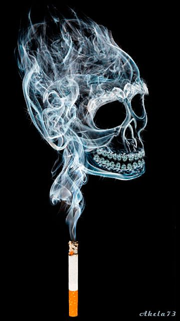 142 best Up In Smoke images on Pinterest | Smoking, Smoke ...