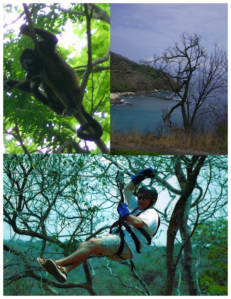 Papagayos Penisula, Costa Rica.  Enjoyed the gorgeous views...birds and wildlife, zip lining.  Beautiful...natural country.