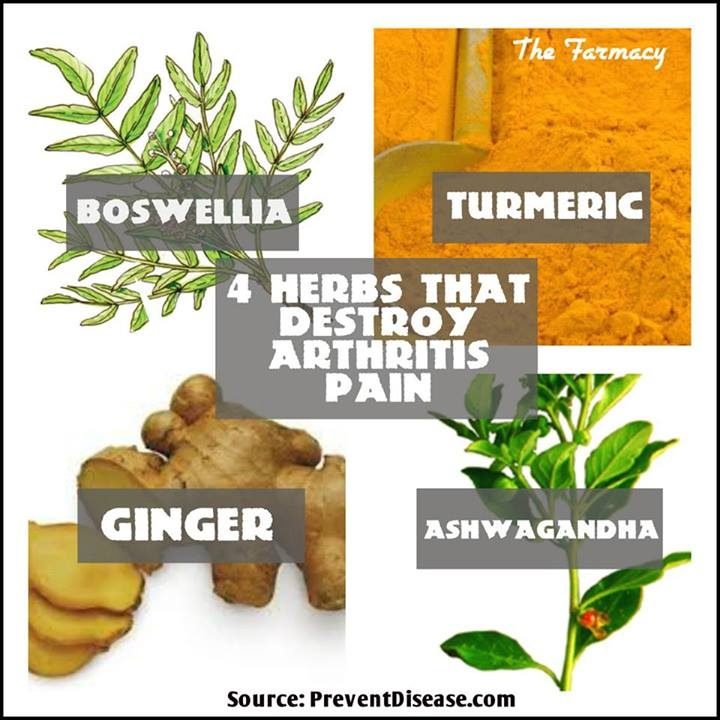 Natural Remedies For Arthritis Herbs