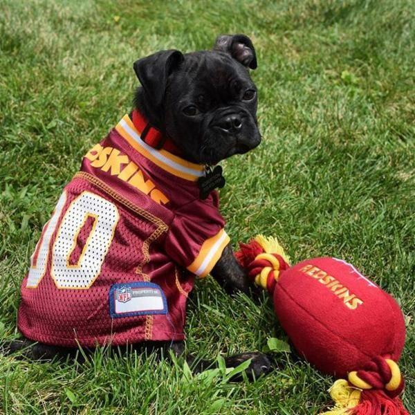 Buggy has his gameface on. #HTTR