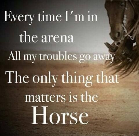 Exactly!! Only think about the horse