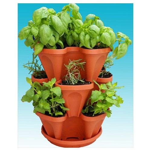 indoor edible gardens herb planters
