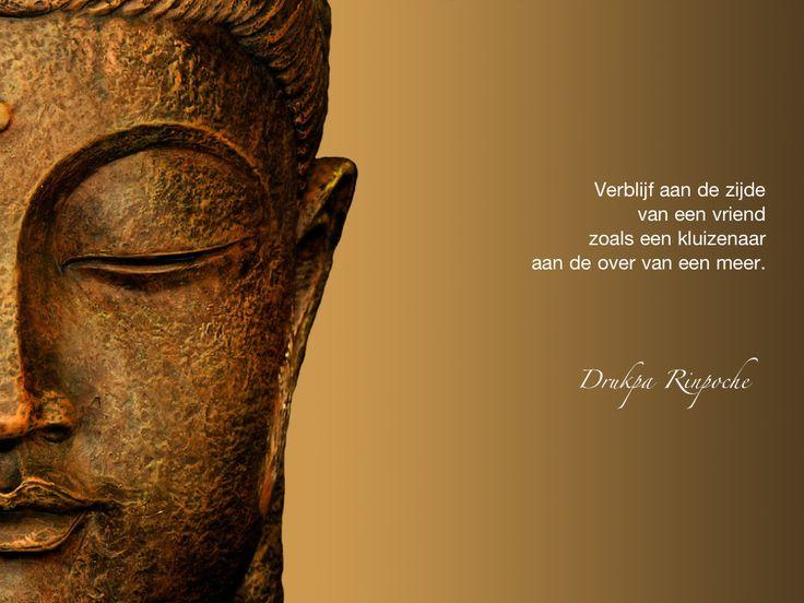 Verblijf aan de zijde van een vriend zoals een kluizenaar aan de oever van een meer. / Drukpa Rinpoche