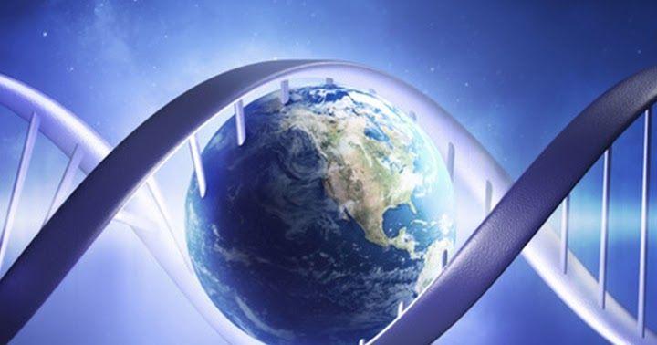 Az evolúció törvénye azt jelenti, hogy minden állandó változásban van. Pantha rei, mondják a görögök, azaz minden folyik. A természetben és az egész kozmoszban uralkodó rend örökös fejlődésre, egy felsőbb létre utal. / ~ Fény, Kurt Tepperwein, spirituális tanítások, spiritualitás, szellemi törvények, szeretet,