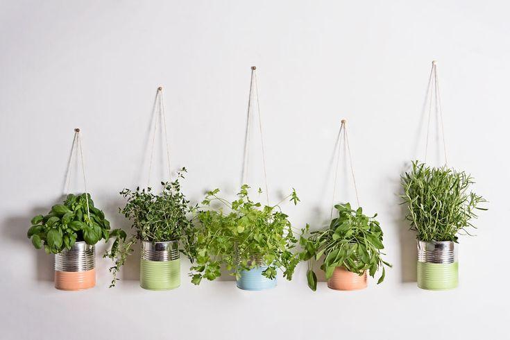 Ein schönes Zuhause für Basilikum und Co.: In unserem Video Tutorial zeigen wir, wie Sie aus alten Dosen einen hübschen Kräutergarten machen!