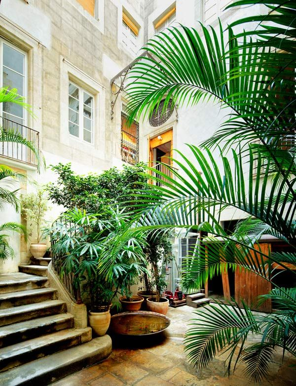 anthology-mag-blog-decorating-decaying-beauty-dwell-8: Plants Can, Spaces, Jungle, Green, Indoor Outdoor, Modern Garage Doors, Barcelona, Houses Plants, Courtyards