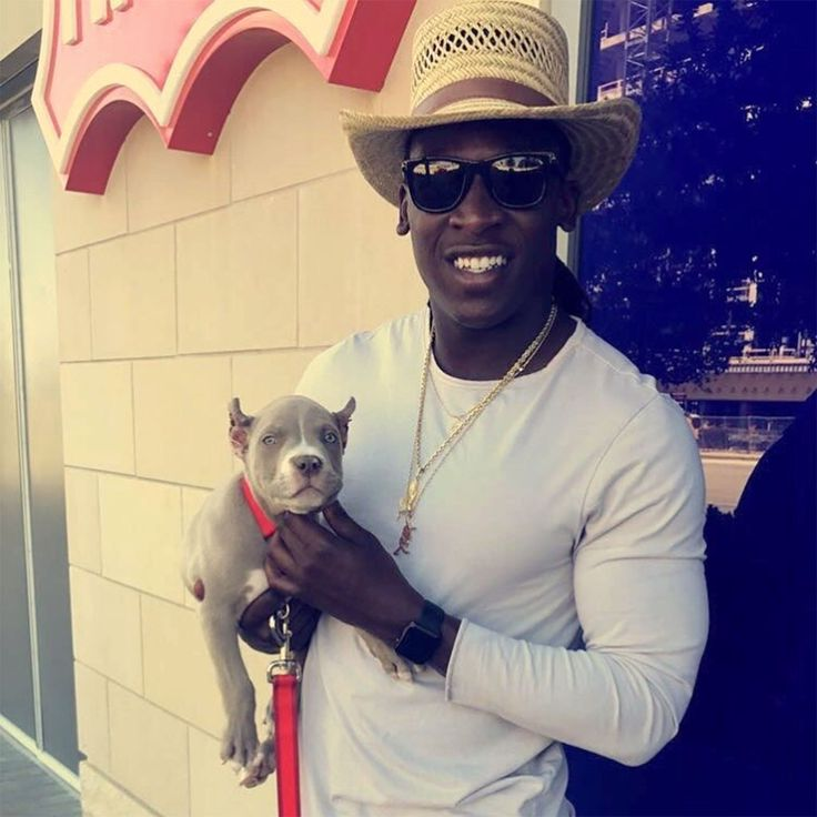 Dallas Cowboys Wide Receiver Lucky Whitehead Says His Dog Was Stolen and Is Being Held forRansom