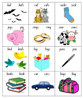 Select the singular or plural noun to match the picture. Grammar for Kindergarten or Year 1 Flourishing in Kindergarten: Spelling- plurals and syllables