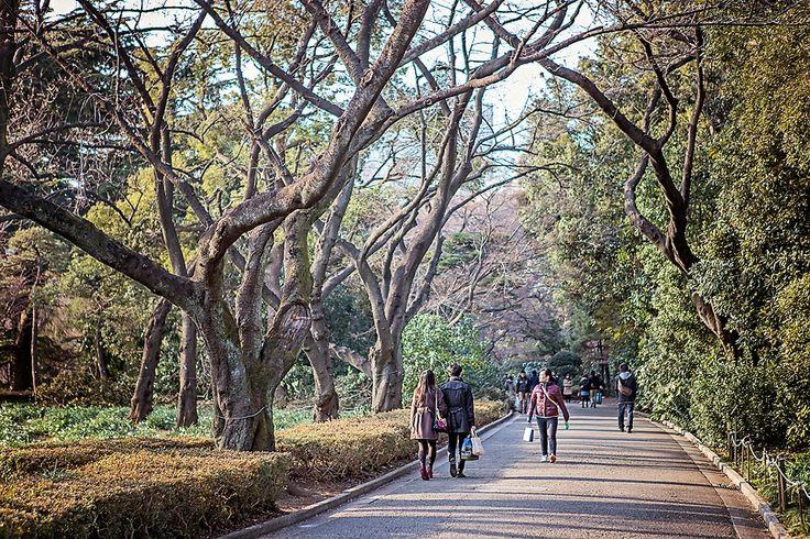 Parks in Tokyo