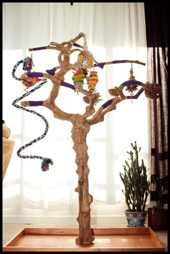 tree stand for birds - Google Search