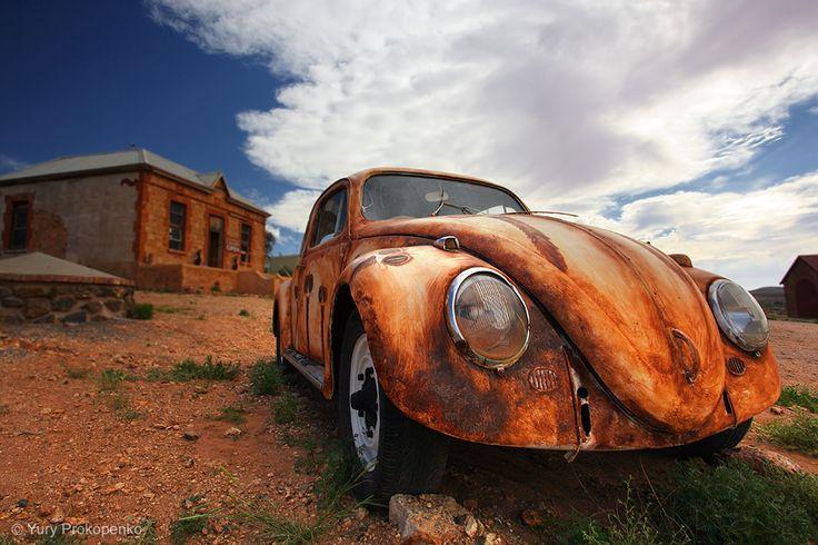 Outback Beetle, Australia
