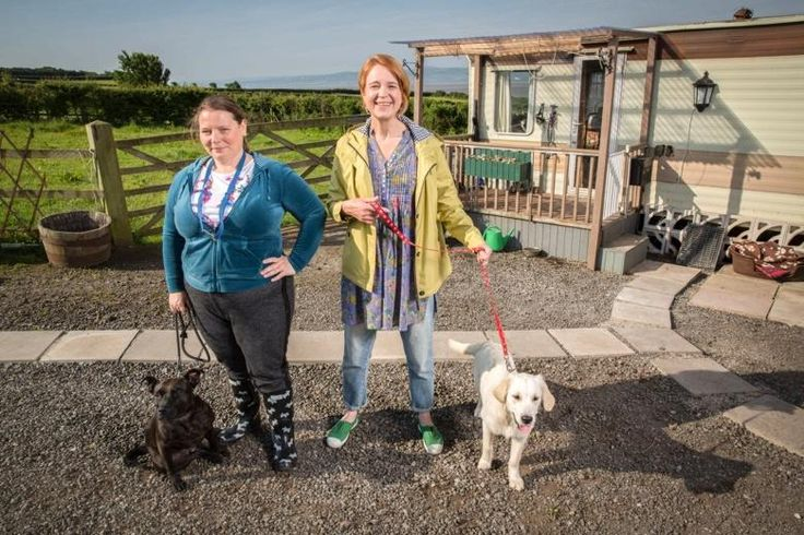 Joanna Scanlan's Puppy Love - a new comedy with bite   The Times