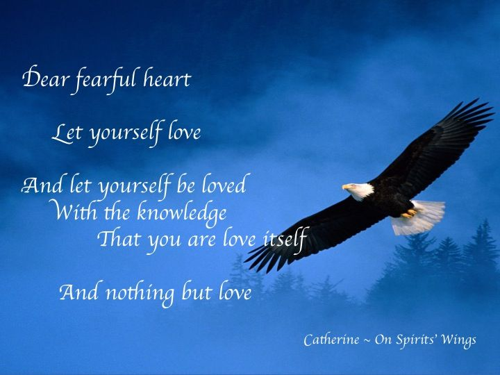 SPIRIT ON LOVE OF SELF A channeled message of love for you. Come visit me and see what 6000 others are talking about… https://www.facebook.com/catherine.onspiritswings