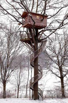 A lookout treehouse! I want my kids to have this