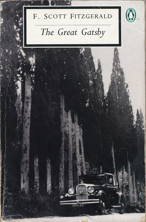 great gatsby lost generation essay If you want the real stories behind the great gatsby about the self-made   memoirs and biographies of members of fitzgerald's lost generation  in this  book, which is comprised of a series of personal essays fitzgerald.
