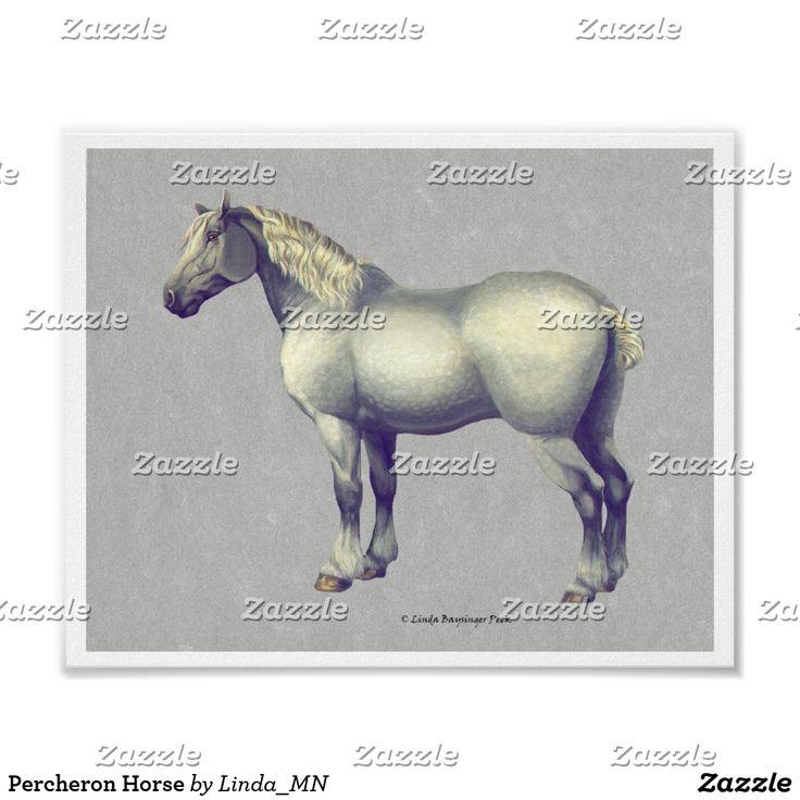 Percheron Horse Poster