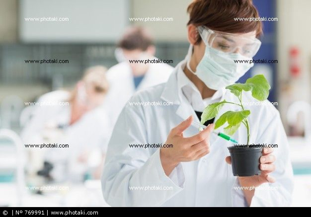 http://www.photaki.com/picture-woman-standing-at-the-laboratory-holding-a-plant-adding-chemical-to-soil_769991.htm