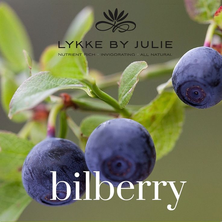 Bilberry seed oil has an exceptional high amount of antioxidants and has properties that are unique to mature skin - it protects and nourishes the skin.