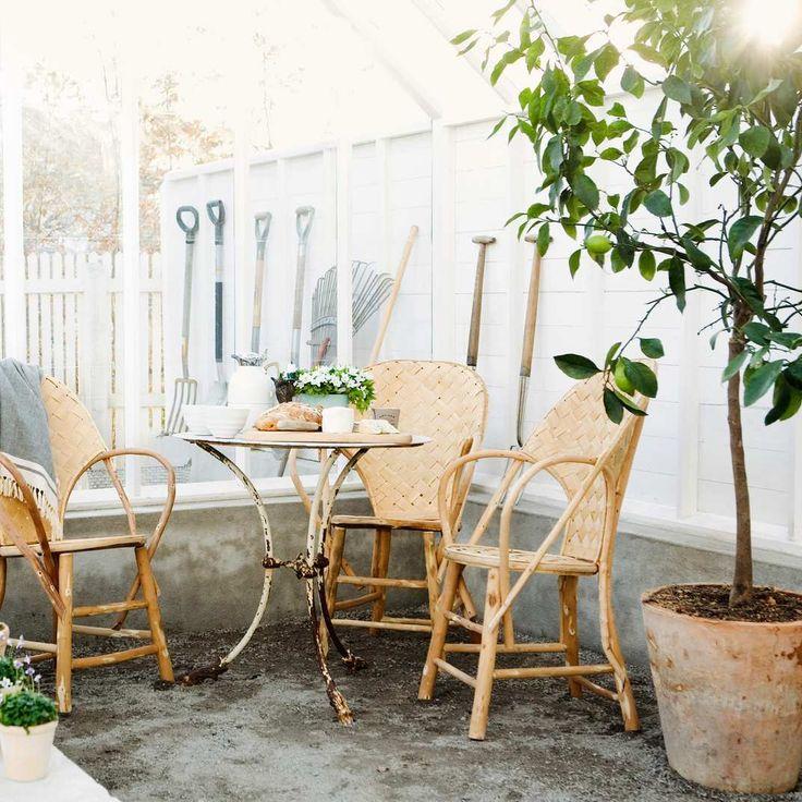 Everything You Need to Grow an Indoor Herb Garden Indoor