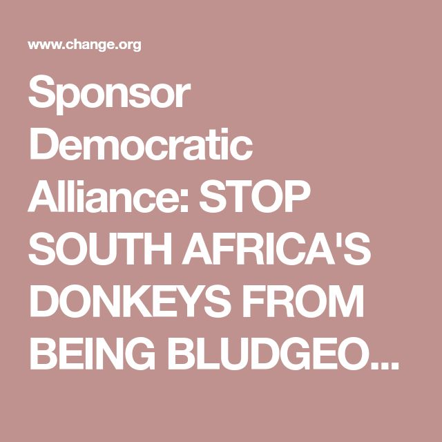 Sponsor Democratic Alliance: STOP SOUTH AFRICA'S DONKEYS FROM BEING BLUDGEONED WITH HAMMERS AND SKINNED ALIVE!