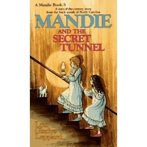 We just discovered the Mandie mysteries. I think there are 40 total, and we can't wait to get started on them!