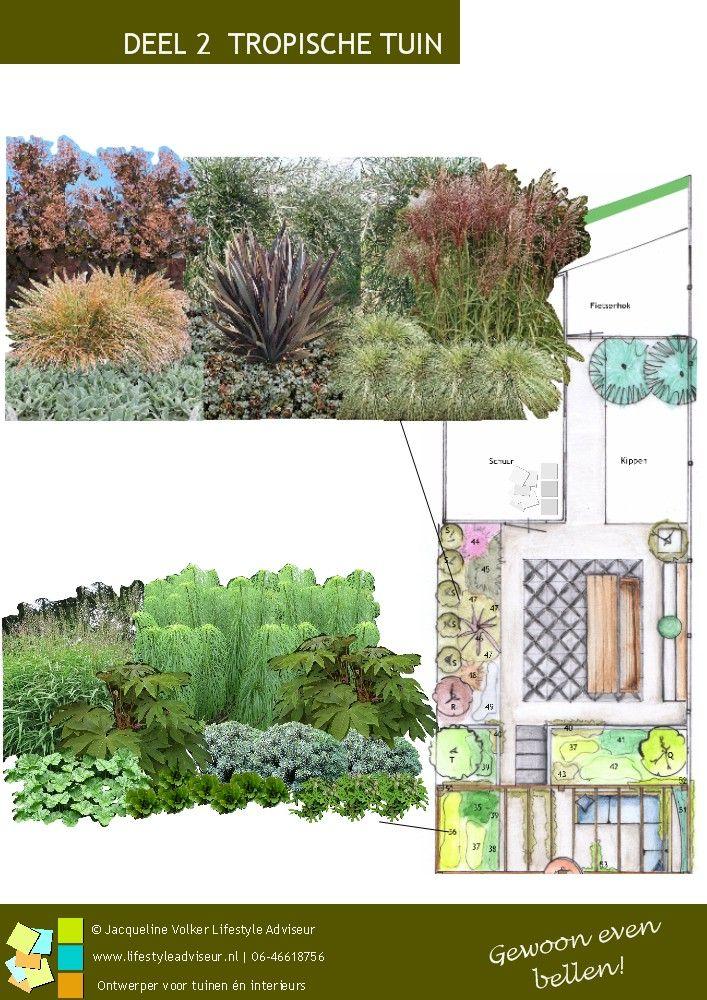 Tropische tuin achtertuin tuinidee. Design: ©Jacqueline Volker  - www.lifestyleadviseur.nl -  Een groene tuin, bladplanten, terrassen 'Vtwonenbuitentegels', buitenkeuken, pergola, in een tropische, exotische, weelderig look. Trendtuin.