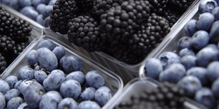 Blueberries and blackberries for sale at the Westmoreland Berry Farm stand at the Arlington Farmers' Market in Arlington, Virginia in this picture taken June 28, 2008.  REUTERS/Jonathan Ernst